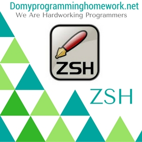DO MY ZSH Homework