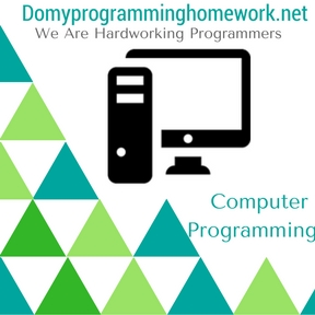 Do my computer programming homework